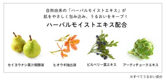 大人ニキビ洗顔料人気ランキング8-2